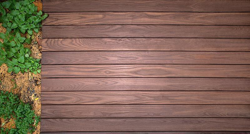 עץ תרמי - רושאר